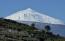 Vym Canarias julia